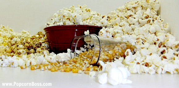 Welcome to The Popcorn Boss website!
